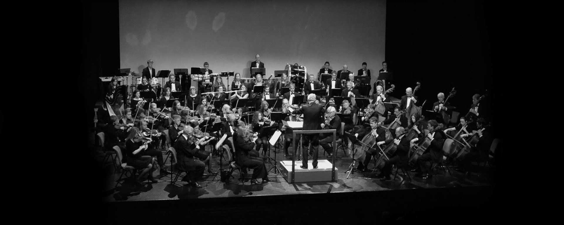 elisabeth-hopman-fluitist-header-9-orkest